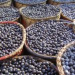 Acai Oil, Water-Soluble