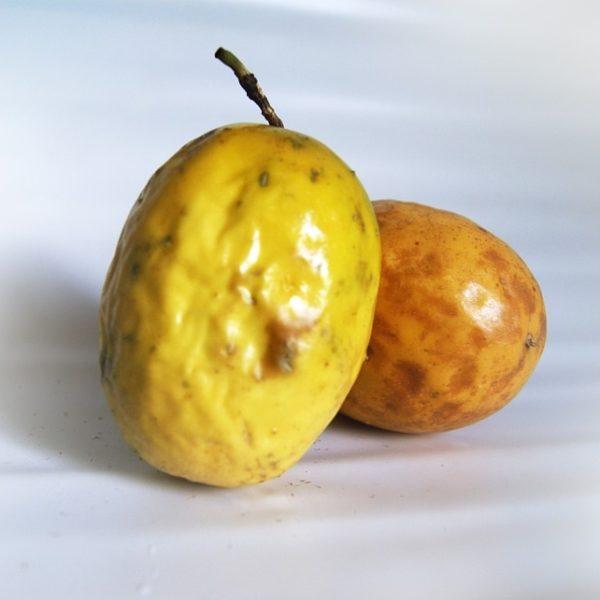 passion-fruit-646854_960_720